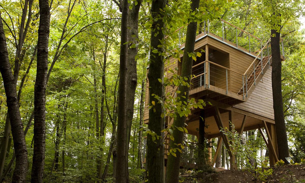 dom_w_drzewach