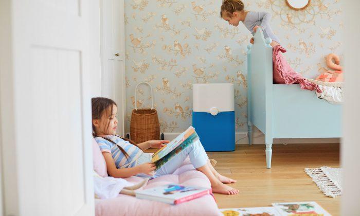 Jak zadbać o jakość powietrza w domu?